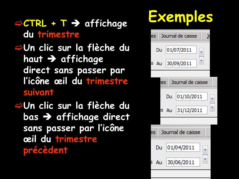 Exemples CTRL + T  affichage du trimestre