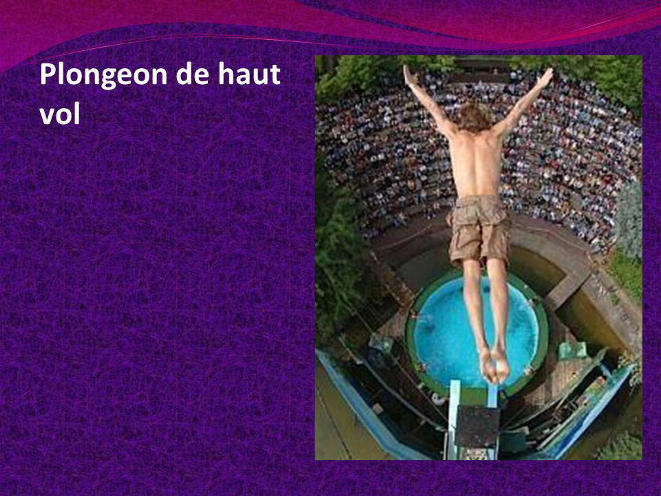 Plongeon de haut vol