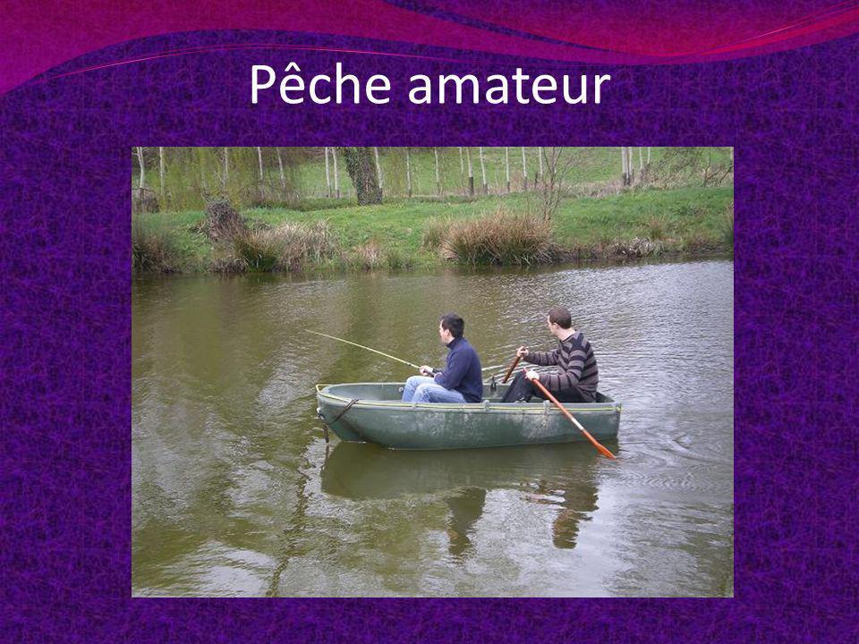 Pêche amateur