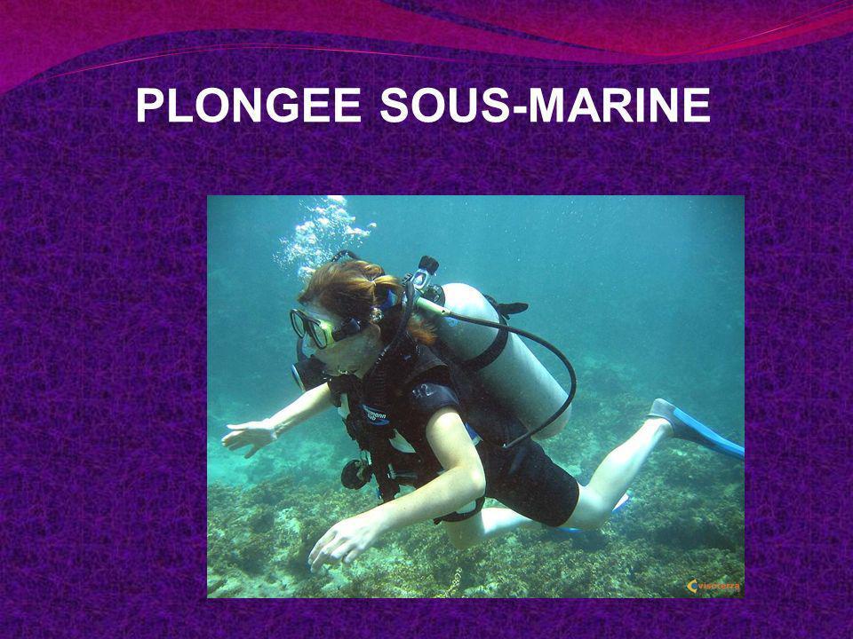 PLONGEE SOUS-MARINE