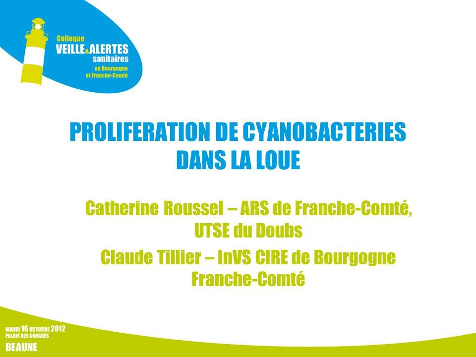 PROLIFERATION DE CYANOBACTERIES DANS LA LOUE