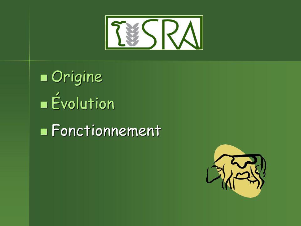 Origine Évolution Fonctionnement