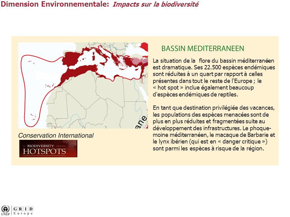 Dimension Environnementale: Impacts sur la biodiversité