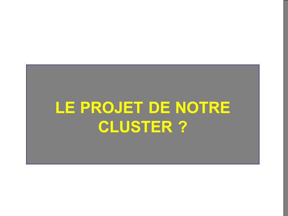LE PROJET DE NOTRE CLUSTER
