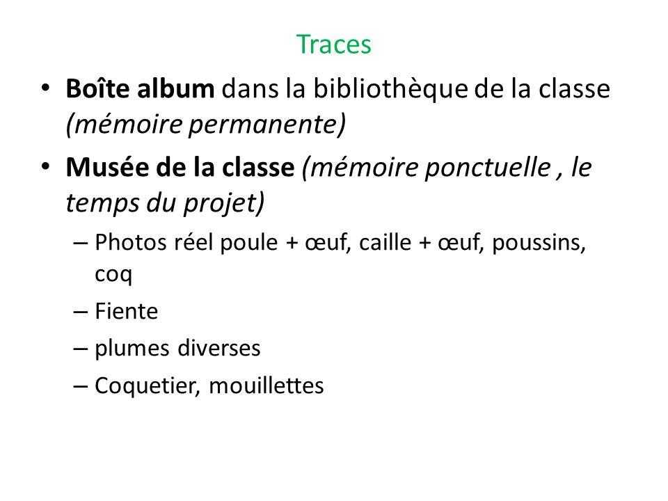 Boîte album dans la bibliothèque de la classe (mémoire permanente)