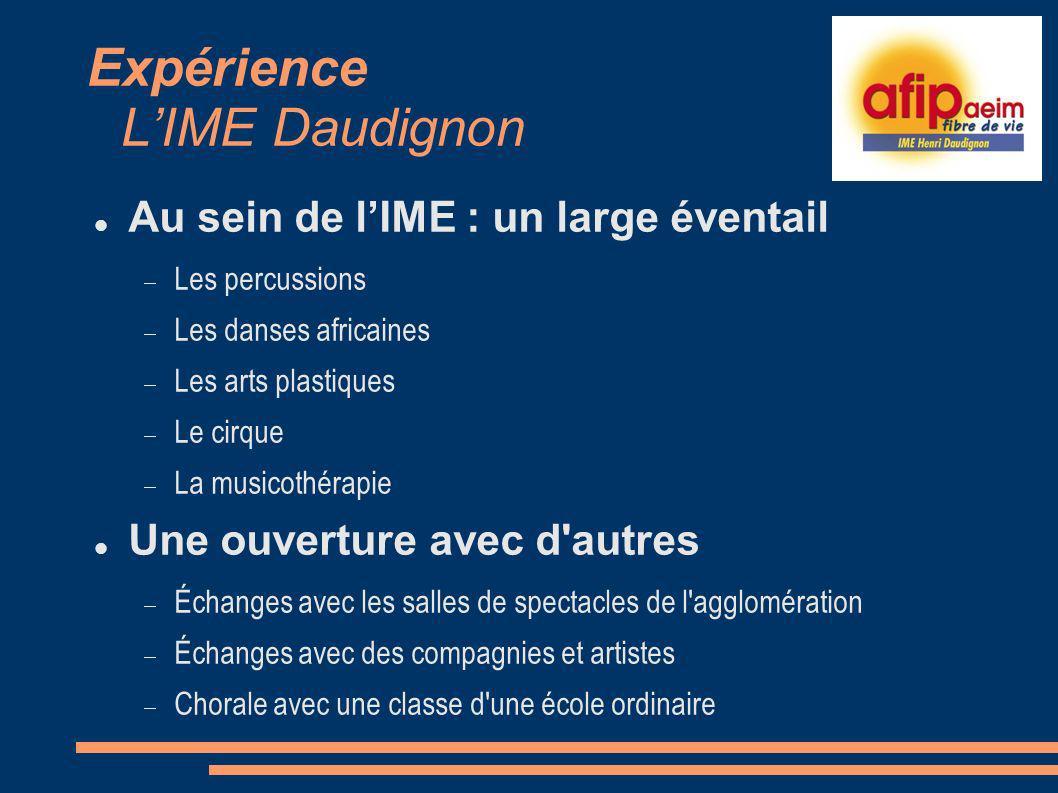 Expérience L'IME Daudignon