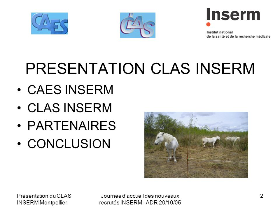 conclusion of adr Adr in business practice and issues across countries and cultures  reasons for choosing alternative dispute resolution 13  conclusion: the importance of being .