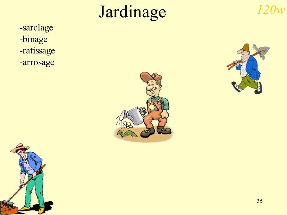 Jardinage -sarclage -binage -ratissage -arrosage