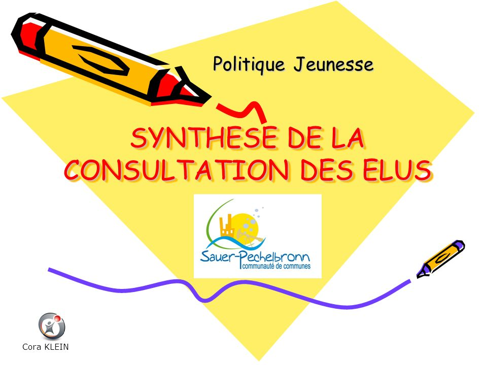 SYNTHESE DE LA CONSULTATION DES ELUS
