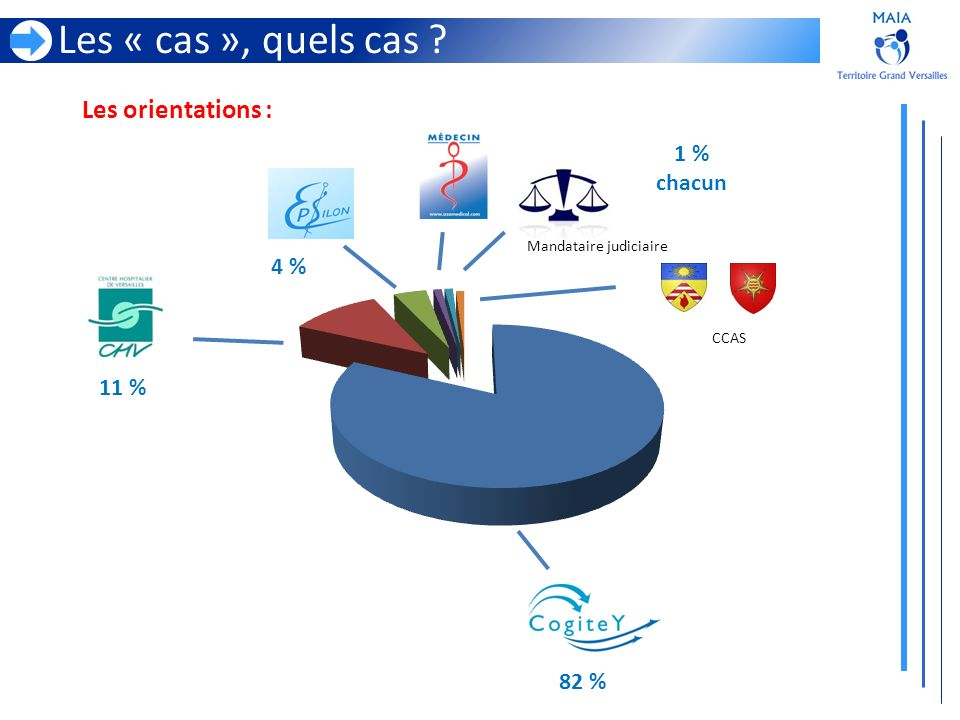 Les « cas », quels cas Les orientations : 1 % chacun 4 % 11 % 82 %