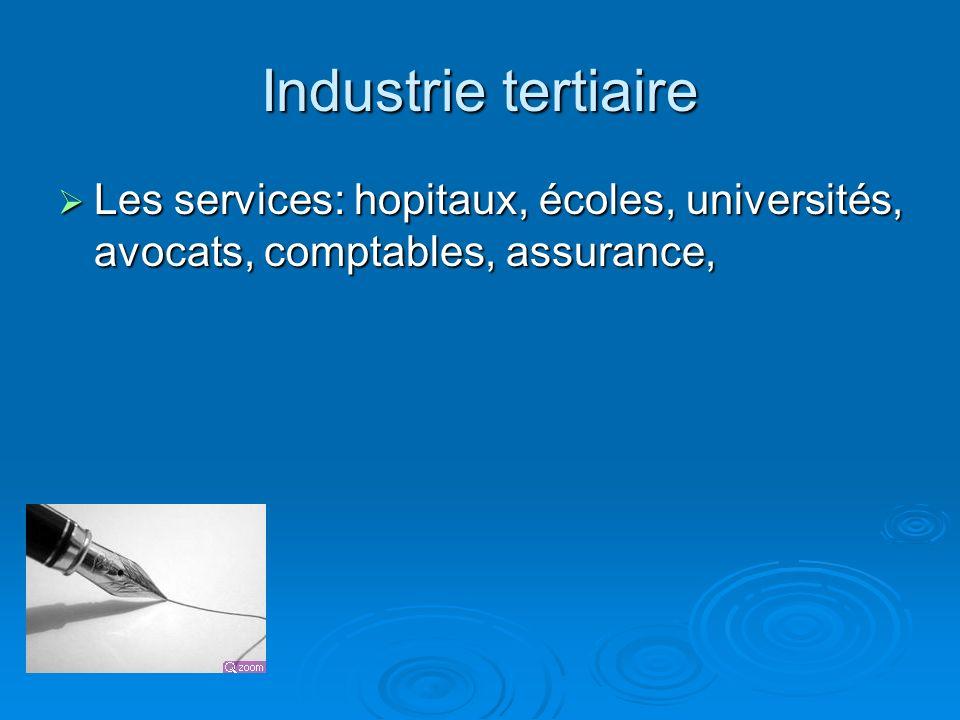 Industrie tertiaire Les services: hopitaux, écoles, universités, avocats, comptables, assurance,