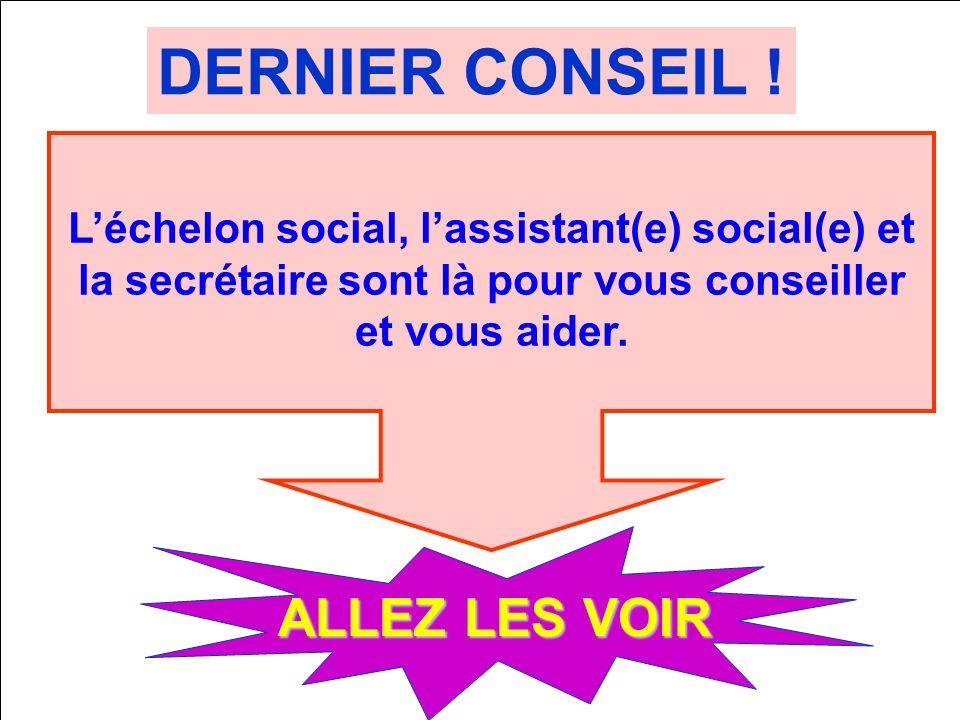 DERNIER CONSEIL ! ALLEZ LES VOIR