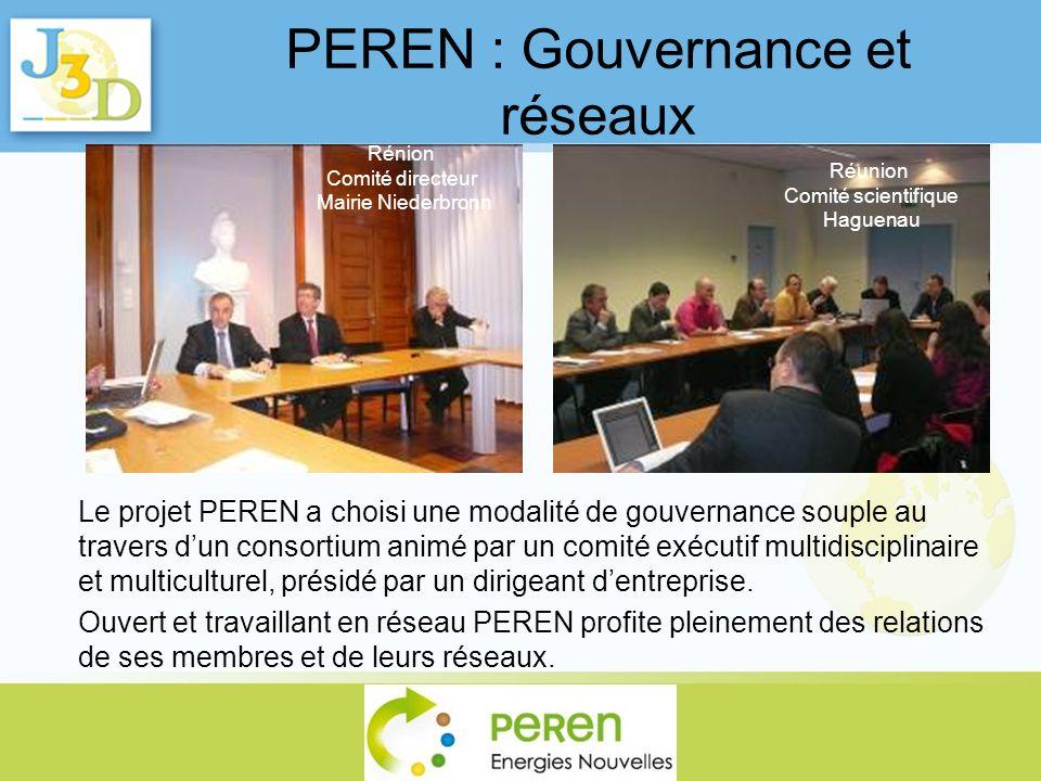 PEREN : Gouvernance et réseaux