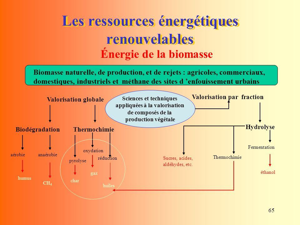 Les ressources énergétiques renouvelables