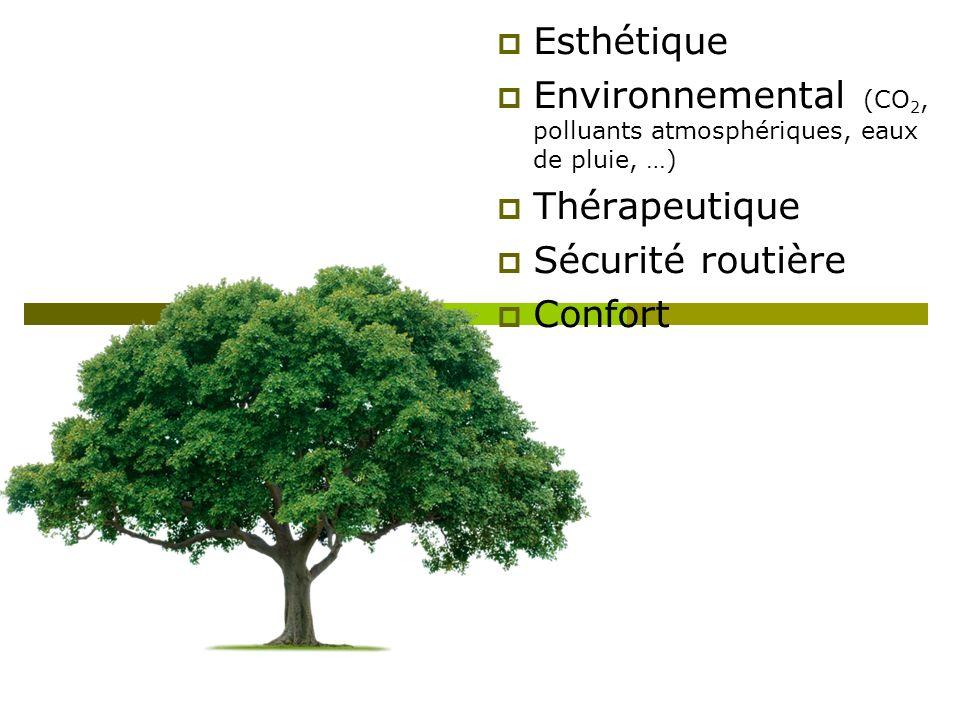 Esthétique Environnemental (CO2, polluants atmosphériques, eaux de pluie, …) Thérapeutique. Sécurité routière.