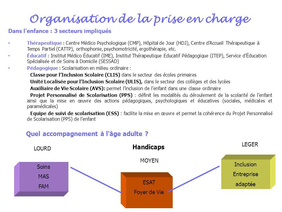 Organisation de la prise en charge