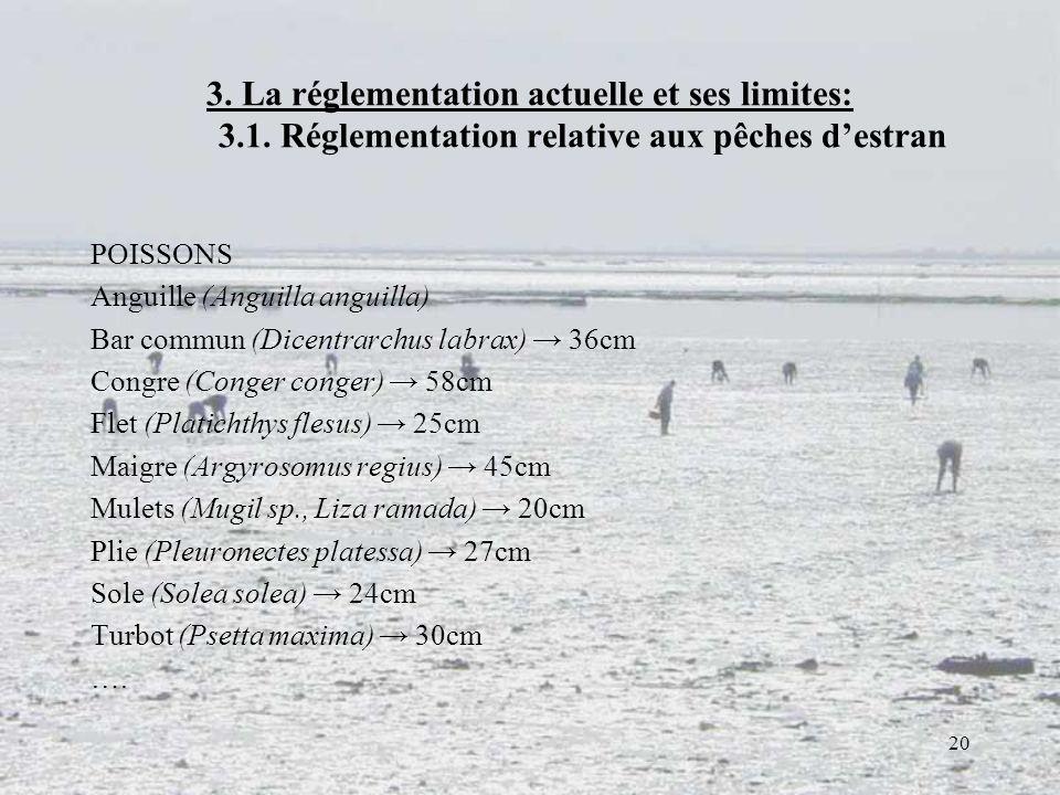 3. La réglementation actuelle et ses limites:. 3. 1