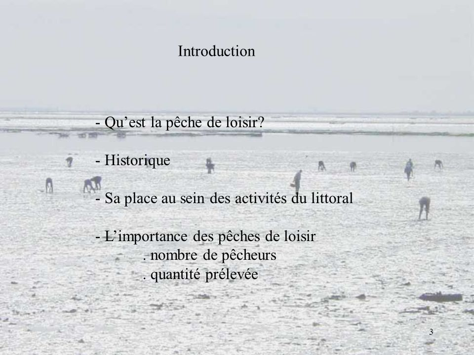 Introduction Qu'est la pêche de loisir Historique. Sa place au sein des activités du littoral. L'importance des pêches de loisir.