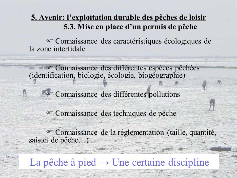 La pêche à pied → Une certaine discipline