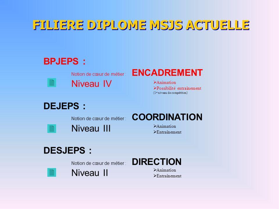 FILIERE DIPLOME MSJS ACTUELLE