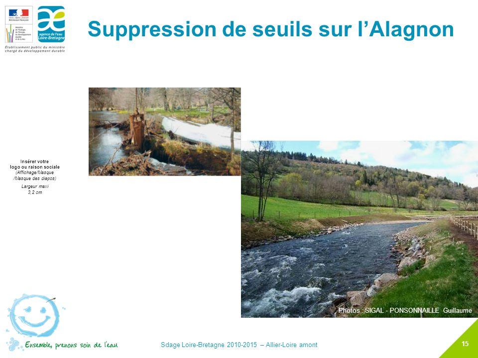 Suppression de seuils sur l'Alagnon