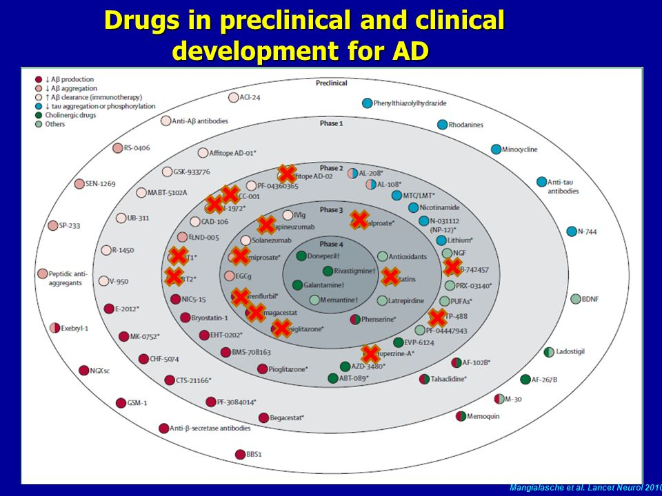 Drugs in preclinical and clinical development for AD