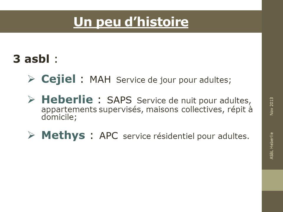 Un peu d'histoire 3 asbl : Cejiel : MAH Service de jour pour adultes;