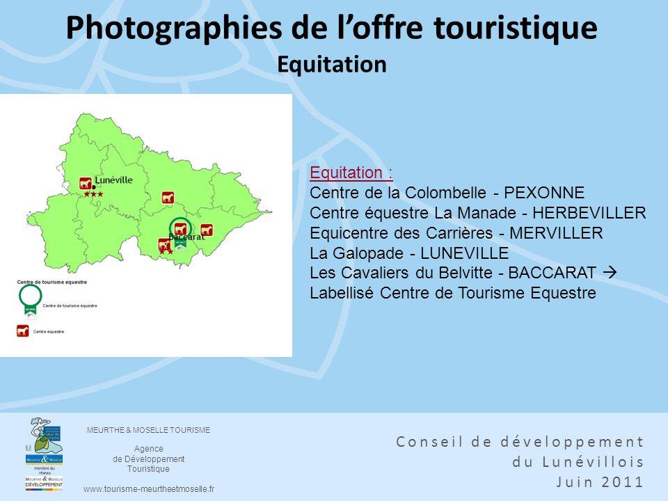 Photographies de l'offre touristique Equitation