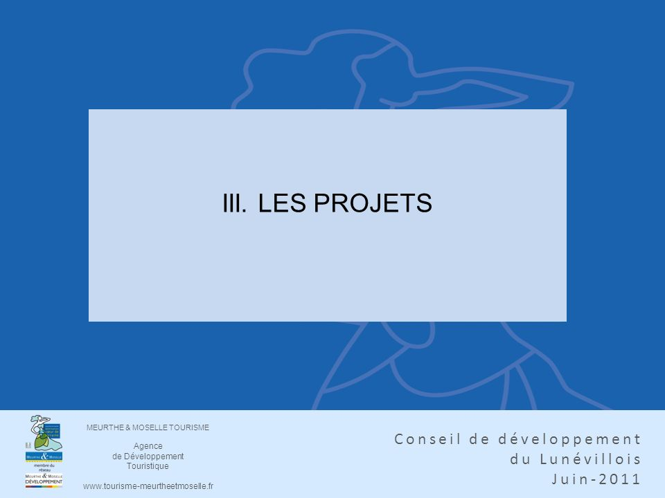 III. LES PROJETS