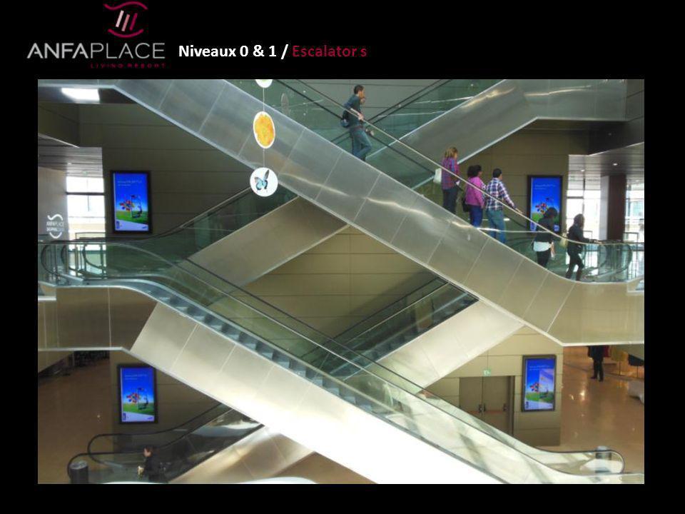 Niveaux 0 & 1 / Escalator s