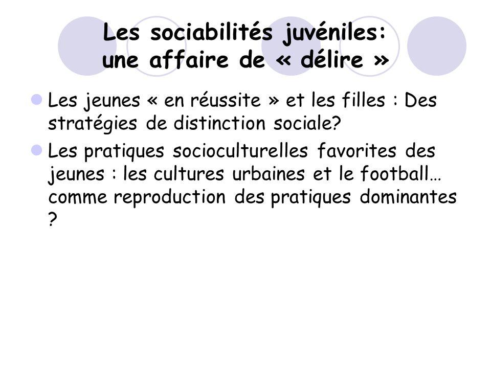 Les sociabilités juvéniles: une affaire de « délire »