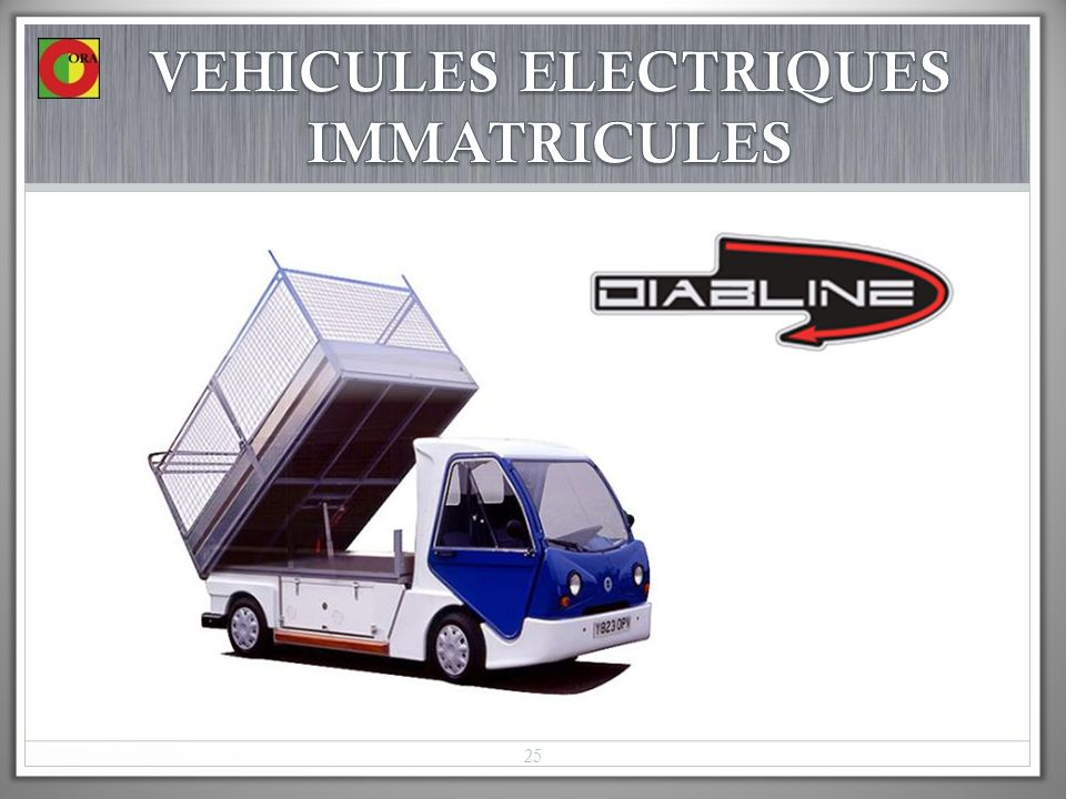 VEHICULES ELECTRIQUES IMMATRICULES