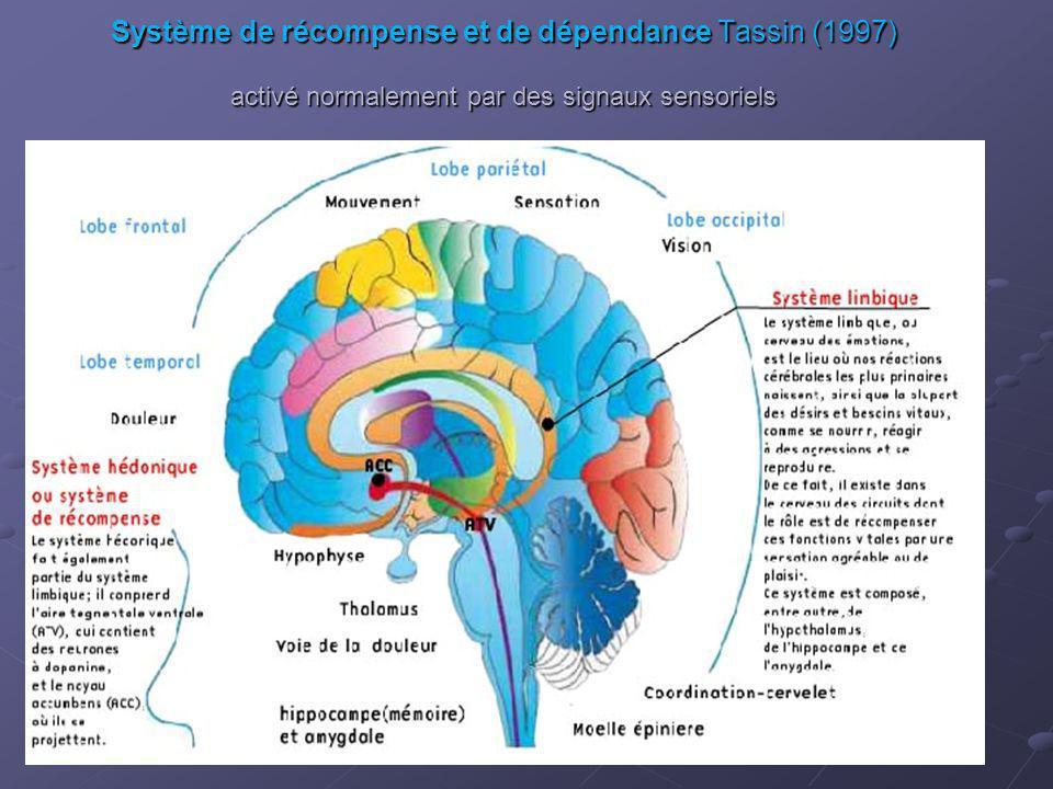 Système de récompense et de dépendance Tassin (1997) activé normalement par des signaux sensoriels
