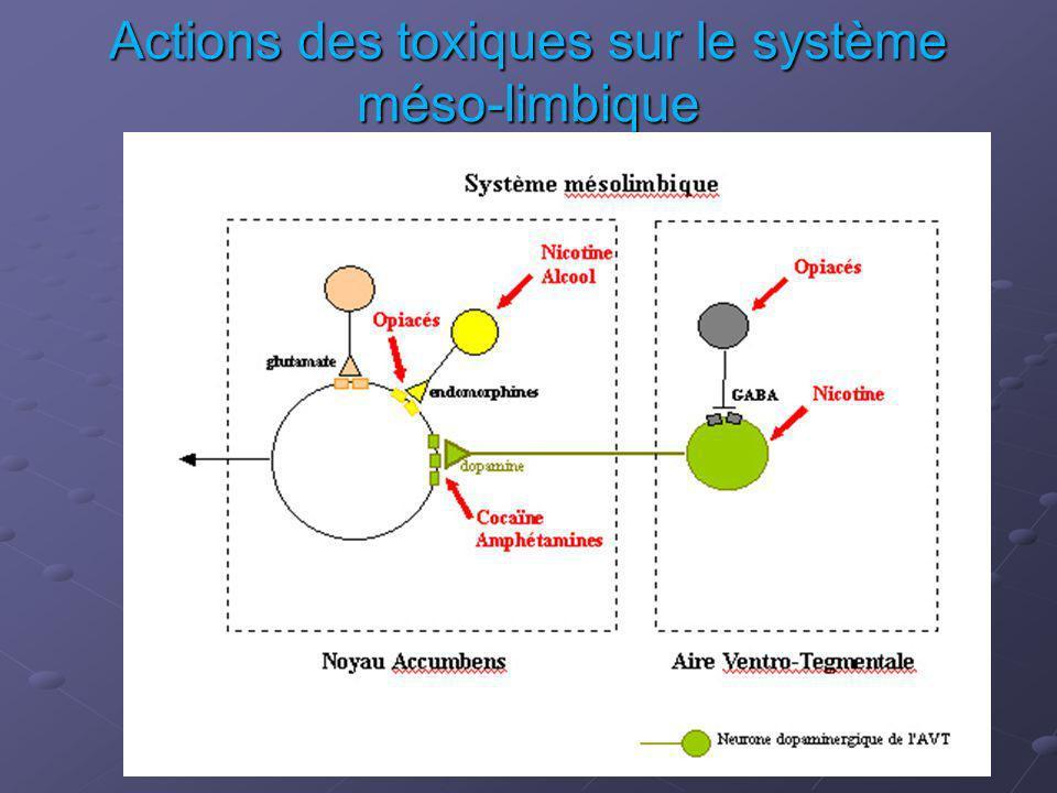 Actions des toxiques sur le système méso-limbique