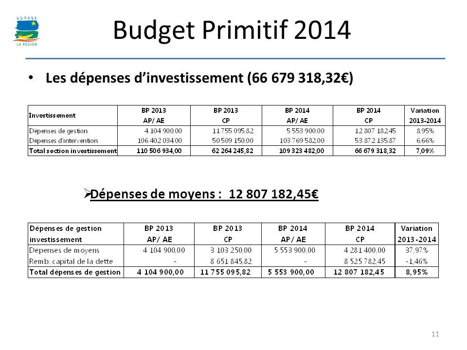 Budget Primitif 2014 Les dépenses d'investissement (66 679 318,32€)