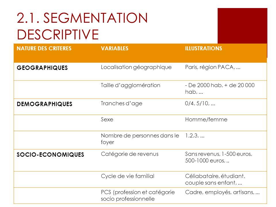 2.1. SEGMENTATION DESCRIPTIVE