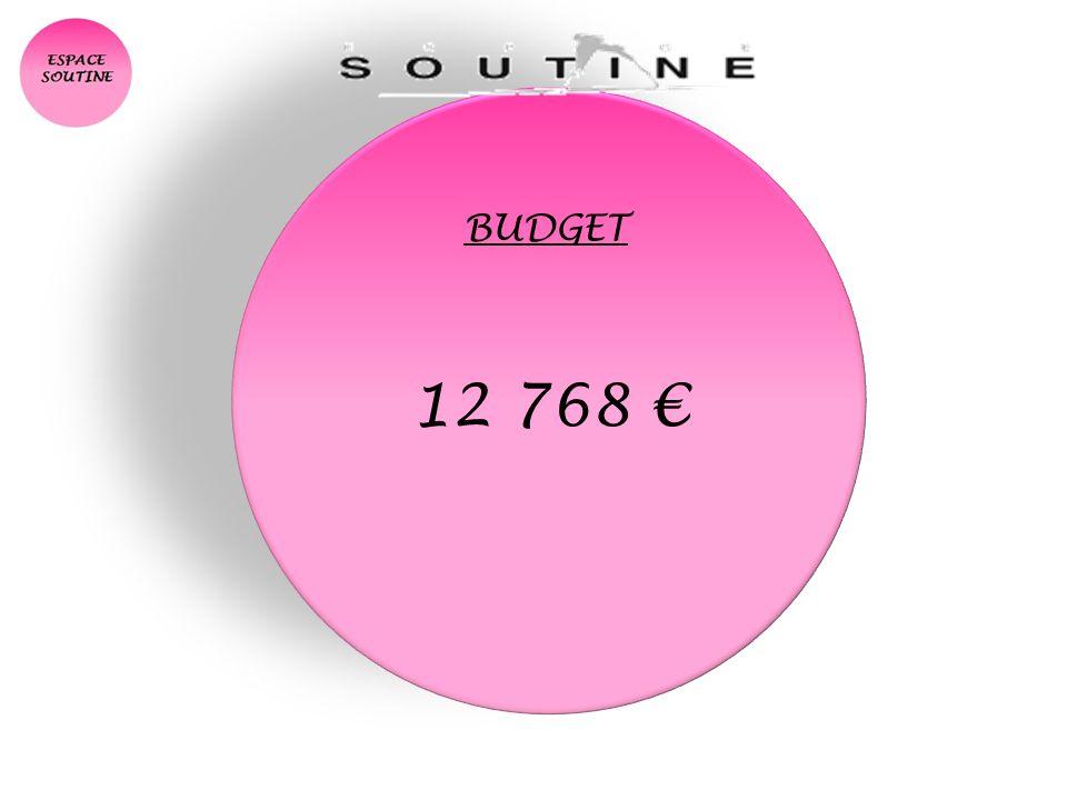 BUDGET 12 768 €