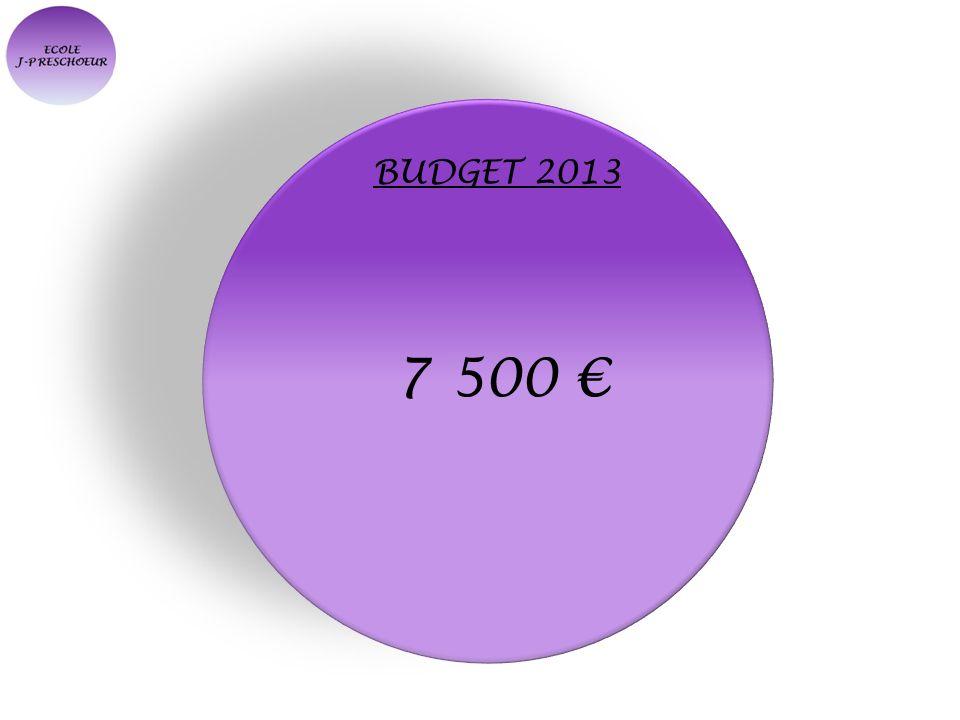 BUDGET 2013 7 500 €