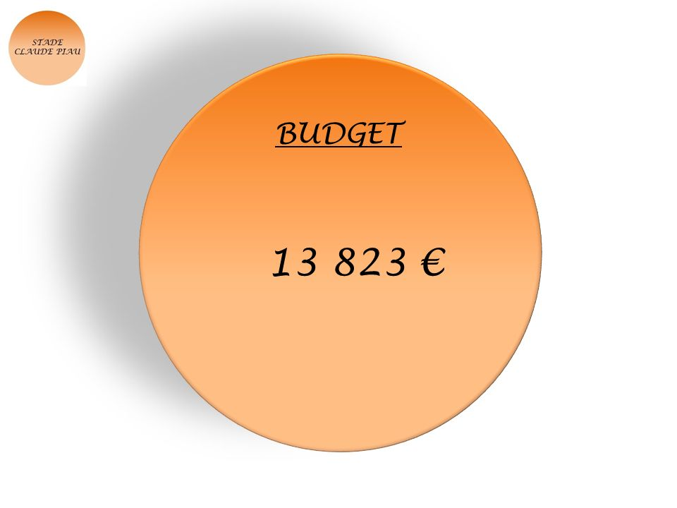 BUDGET 13 823 €