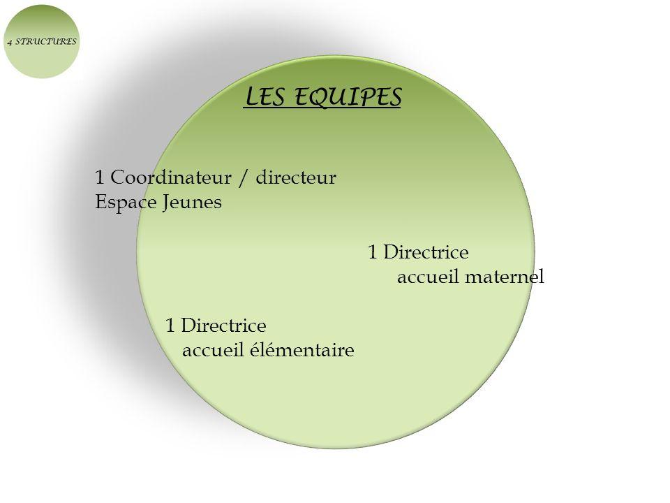 LES EQUIPES 1 Coordinateur / directeur Espace Jeunes 1 Directrice