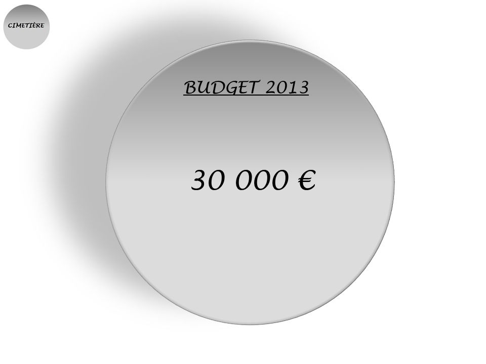 BUDGET 2013 30 000 €