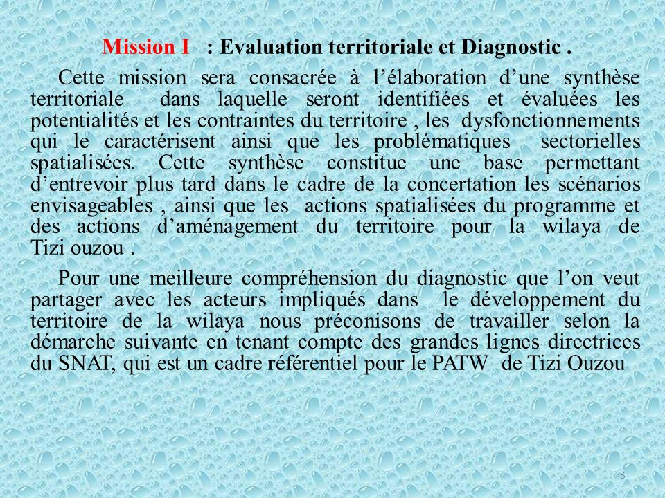 Mission I : Evaluation territoriale et Diagnostic .