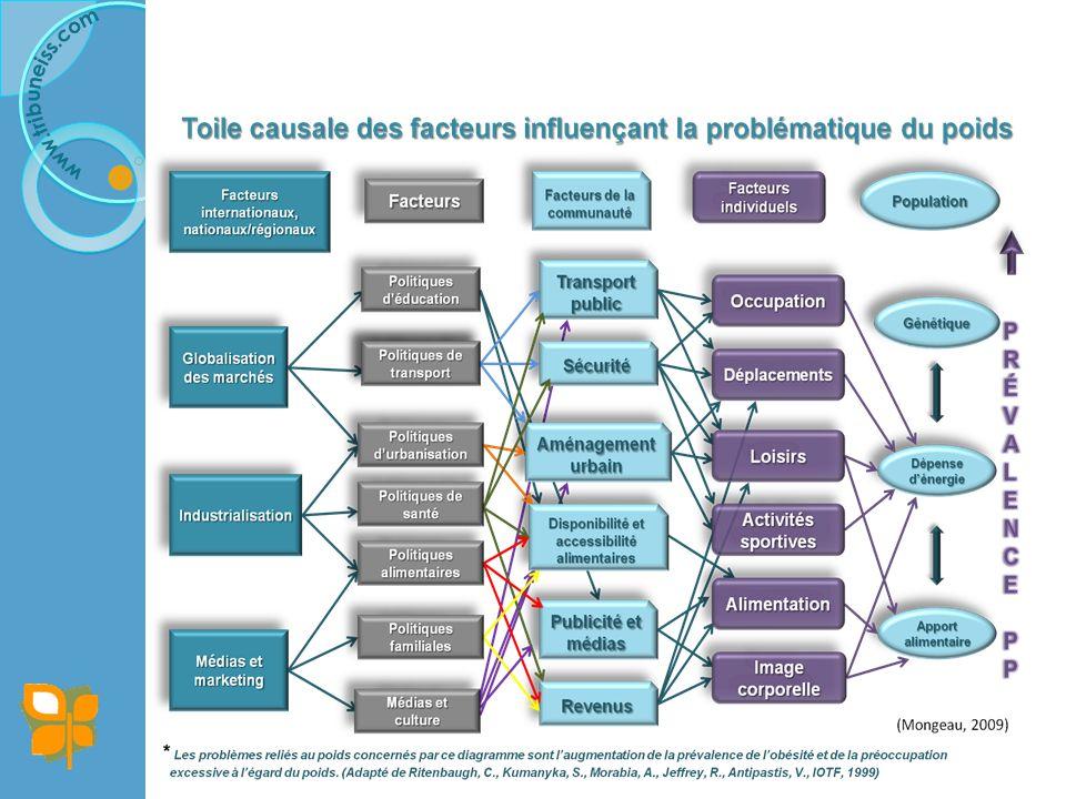Boudreault, D. , 2009, accessible en ligne: http://www
