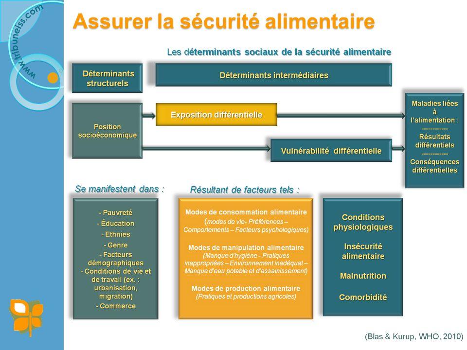 Assurer la sécurité alimentaire Exemple : Le Programme national de développement des racines et tubercules (R&T) au Cameroun