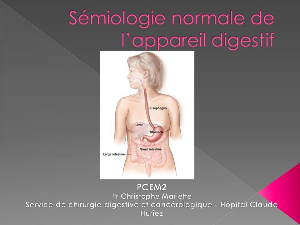 Sémiologie normale de l'appareil digestif