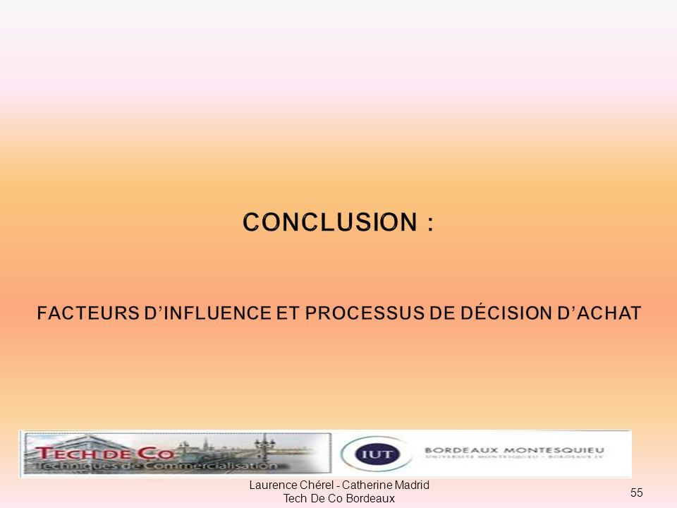 CONCLUSION : facteurs d'influence et processus de décision d'achat