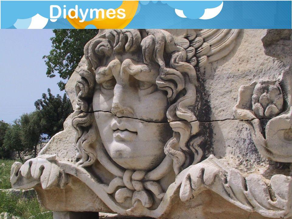 Didymes