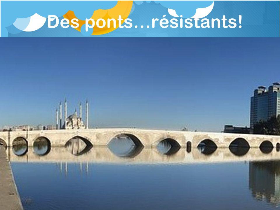 Des ponts…résistants! Pont Adana