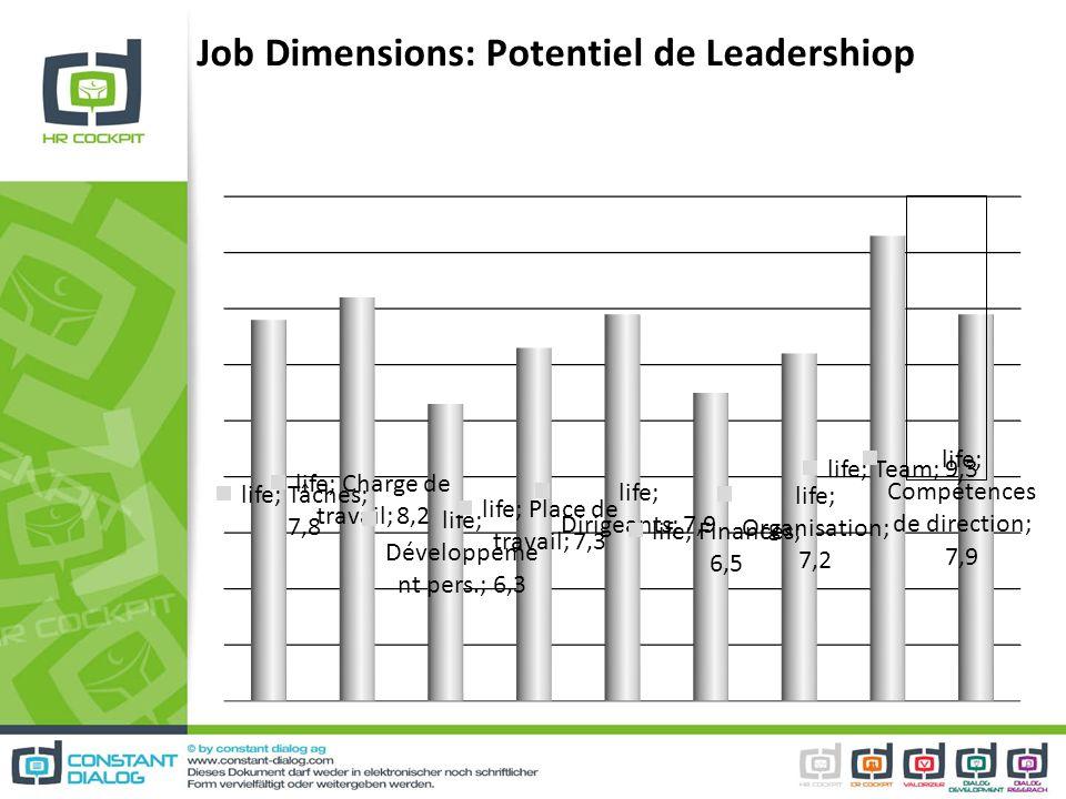 Job Dimensions: Potentiel de Leadershiop
