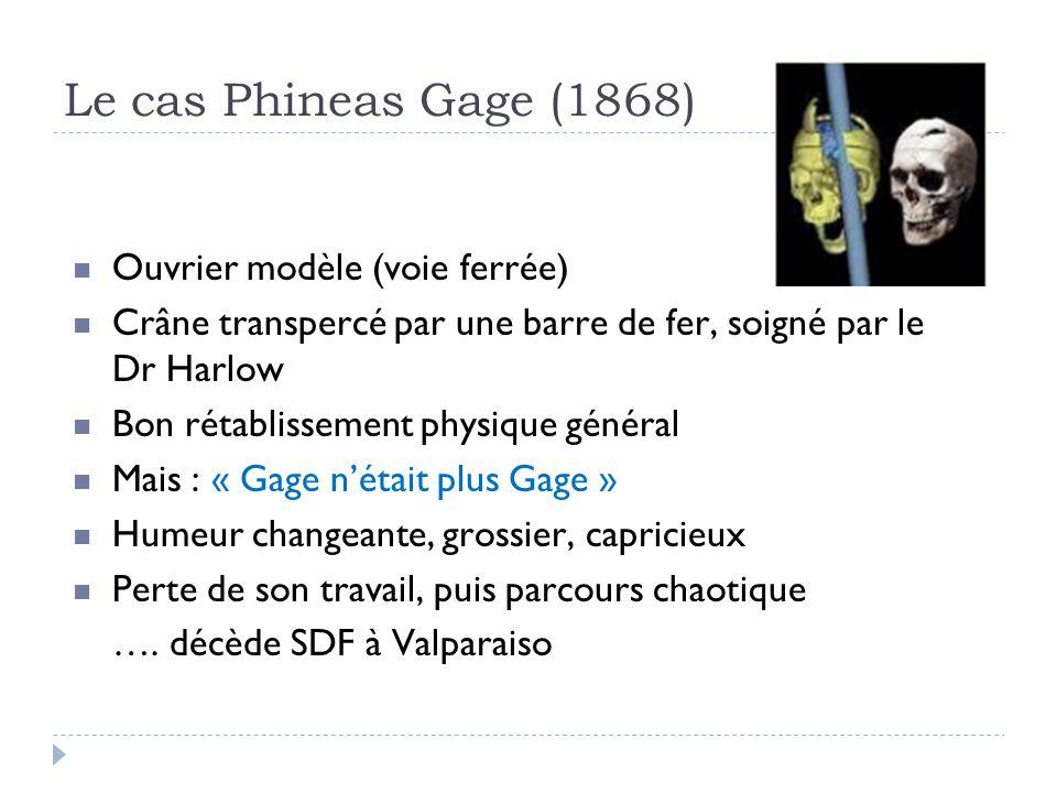 Le cas Phineas Gage (1868) Ouvrier modèle (voie ferrée)
